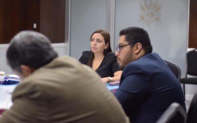 Reunión con Distintos Sectores para Revisar la Iniciativa de Ley de Paternidad Responsable, Activa y Positiva